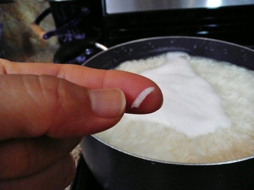 parboiled rice grain
