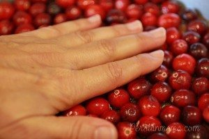 solid cranberry layer