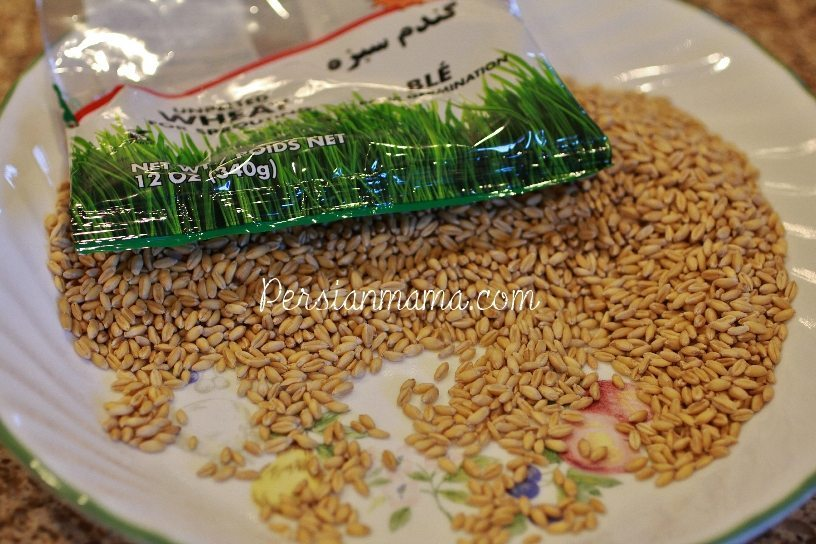 Day 1 Sabzeh Nowruz